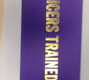 If you get 7 officers trained at each training session, you can receive this ribbon.